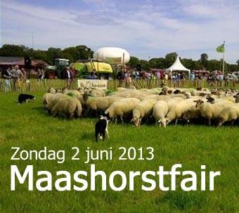 340_Maashorstfair