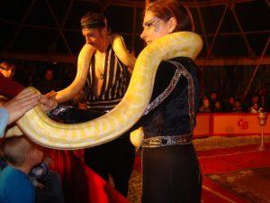 Circus_Bavaria_bij_BillyBird